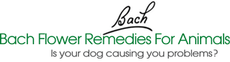 Bach Flower Remedies For Animals With Agnes Schmitz